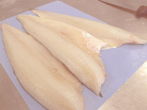 rsz_haddock-filets-salty-cod-new-bedford-guide