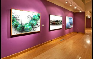 Art Gallery New Bedford