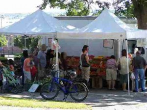 Clasky Common Farmers Market