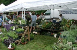 Dartmouth MA Farmers Market