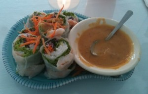 Fresh Rolls at Spicy Lime in New Bedford