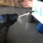 sealpainting