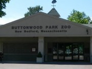 buttonwood-park-zoo-new-bedford