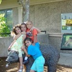 buttonwood zoo kids