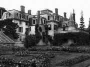 arnold estate