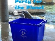party for the planety at buttonwood zoo