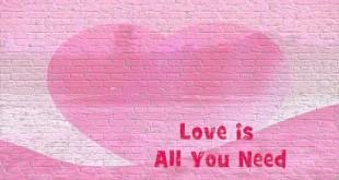 heartlovequote