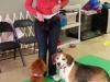 MJs Pet Training Academy12.jpg