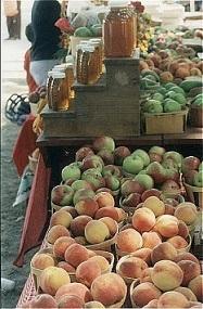 silverbrook-acushnet-peaches