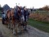 silverbrook-acushnet-horse-drawn-hayrides