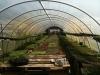 silverbrook-farm-dartmouth1