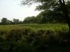 silverbrook-farm-dartmouth4