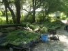silverbrook-farm-dartmouth6