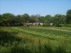 silverbrook-farm-dartmouth14