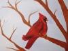 cardinal-jpg