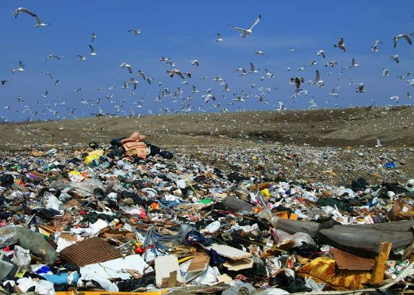 New Bedford Landfill