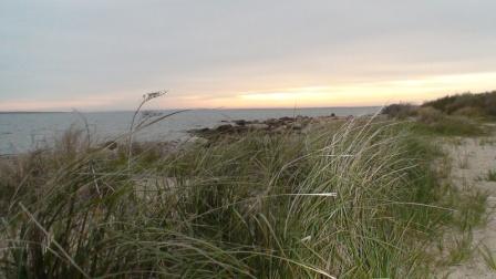 West Island Beach in Fairhaven