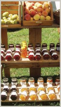 Silverbrook Farm Dartmouth CSA Program